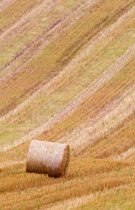 Round bale,field patterns and colours,near Scotts View,Melrose in the Scottish Borders