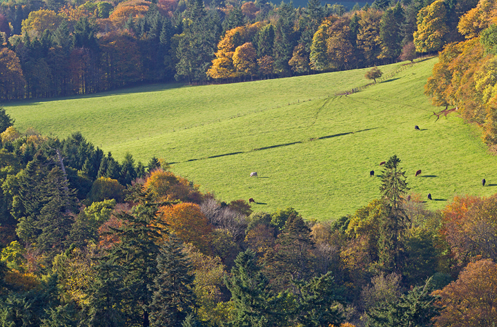 Scotts View,Melrose,Scottish Borders