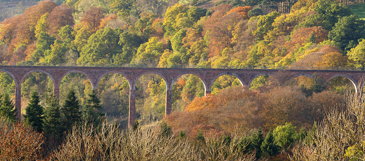 Leaderfoot viaduct and autumnal trees.