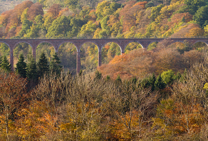 View towards Leaderfoot viaduct,Melrose,Scottish Borders.
