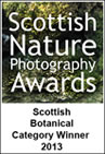 Scottish Nature Photography Awards Scottish Botanical Catagory Winner